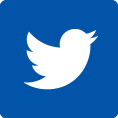 twitter icon link
